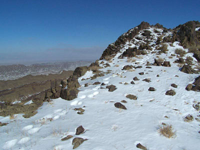 snow leopard tracks on mountain ridgeline