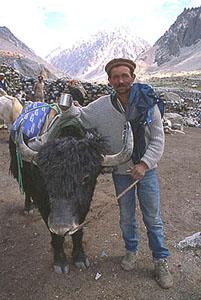 Shimshal villager