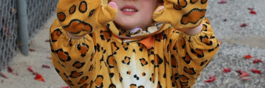 little boy in leopard costume