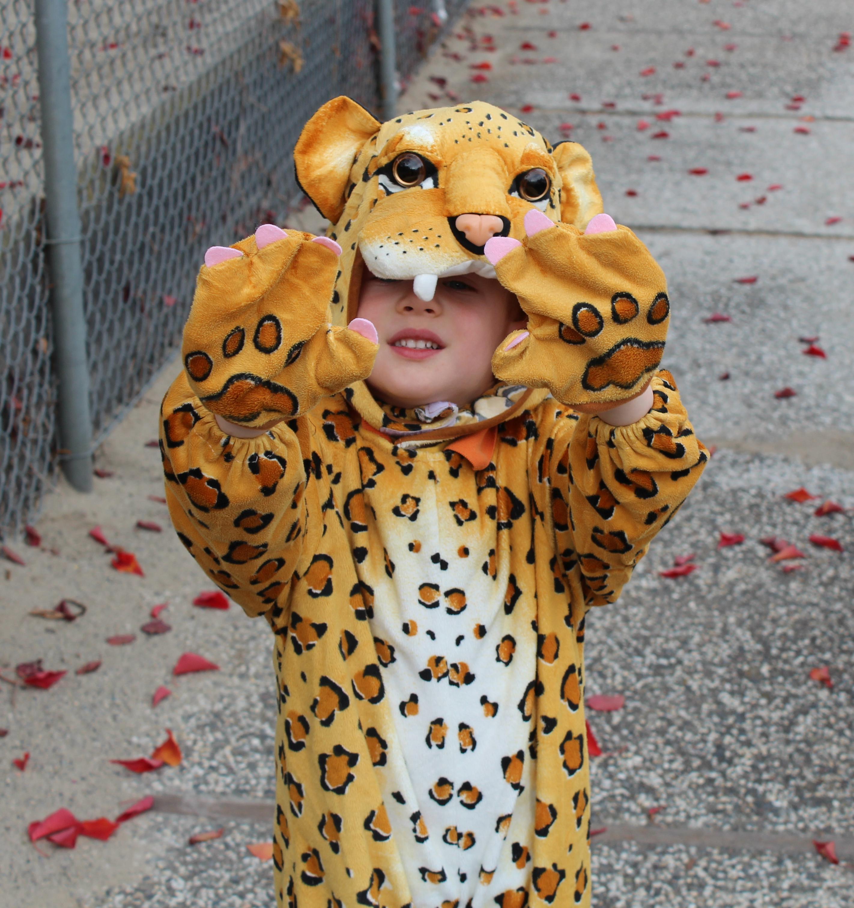 little boy in leopard costume & Kids Helping Snow Leopards | Snow Leopard ConservancySnow Leopard ...