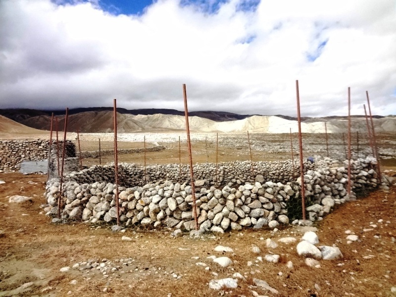 Livestock corral with fencing on top