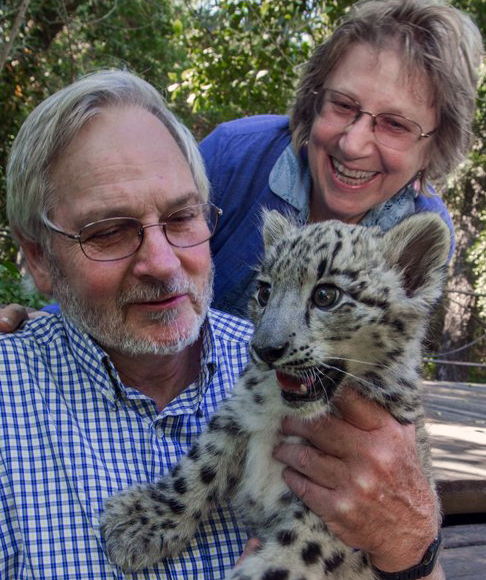 Rodney, Darla and Jackson the snow leopard cub