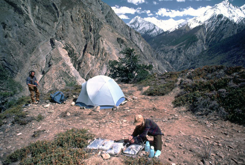 Darla near tent at high camp