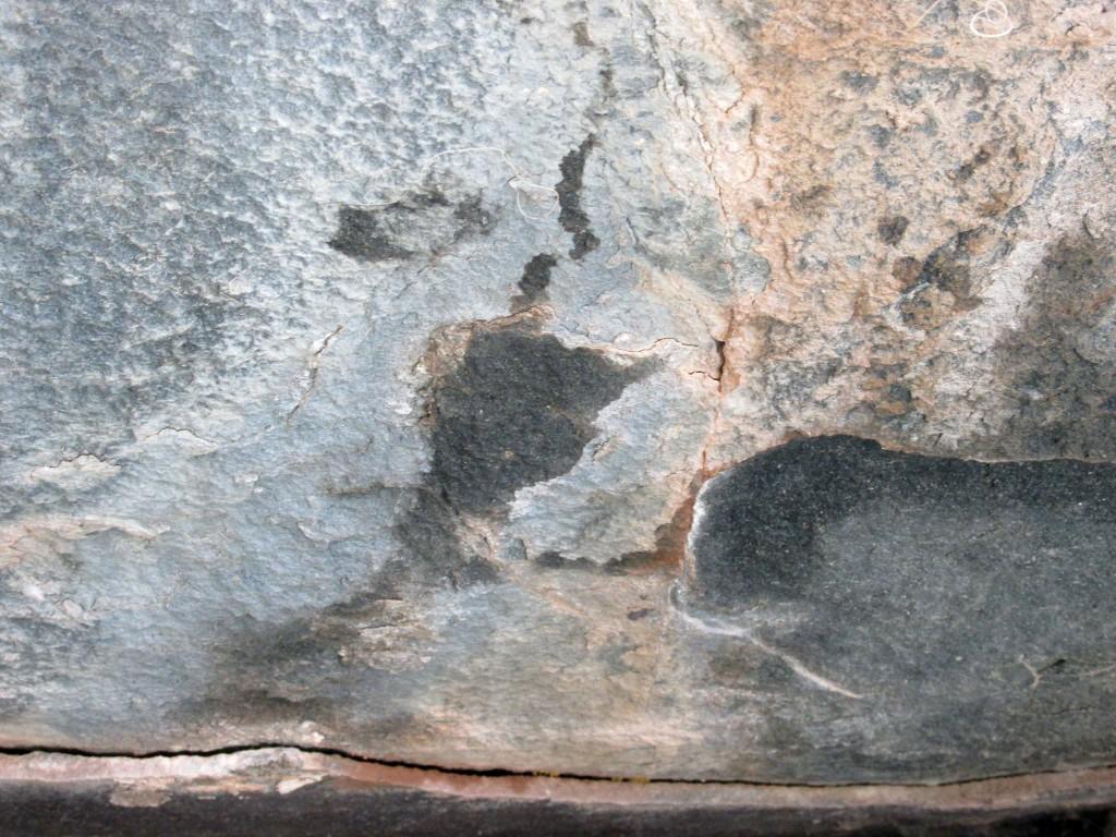 Snow leopard urine mark on rock