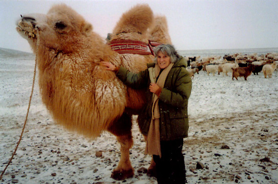 Janet standing next to a fluffy camel