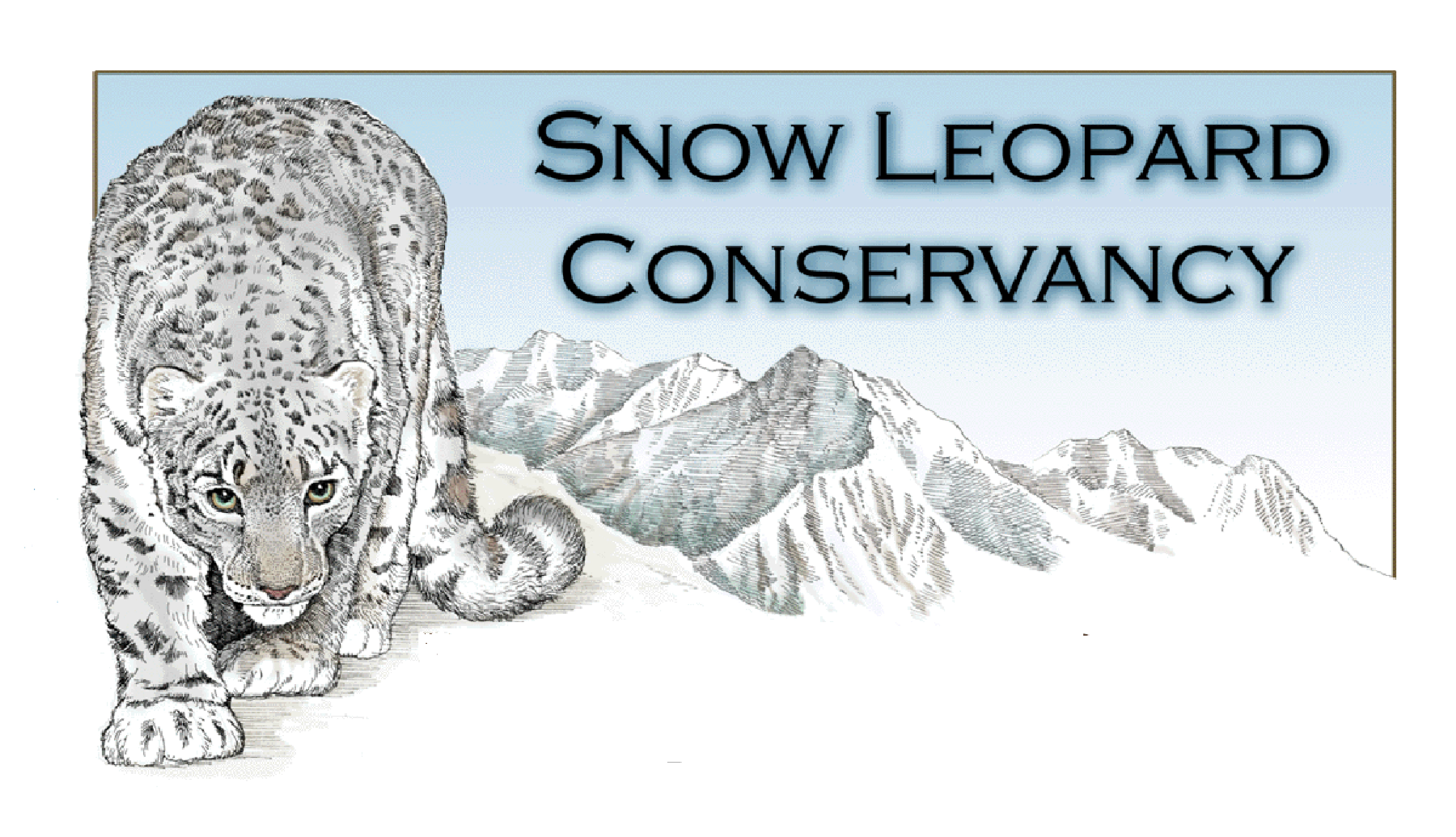 leopard conservation Slc's senior staff provide technical expertise based on nearly four decades of snow leopard research and conservation, particularly in participatory.