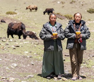Herders setting up FoxLights Annual Report