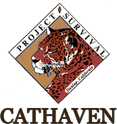 cathaven logo