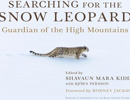 Announcement of Upcoming Publication of Searching for the Snow Leopard